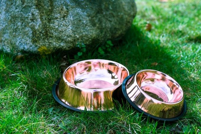 Copper Dog Bowls © CuBowl