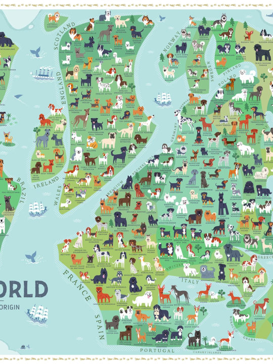 Dogs of the World Map by Lili Chin (@doggiedrawings)