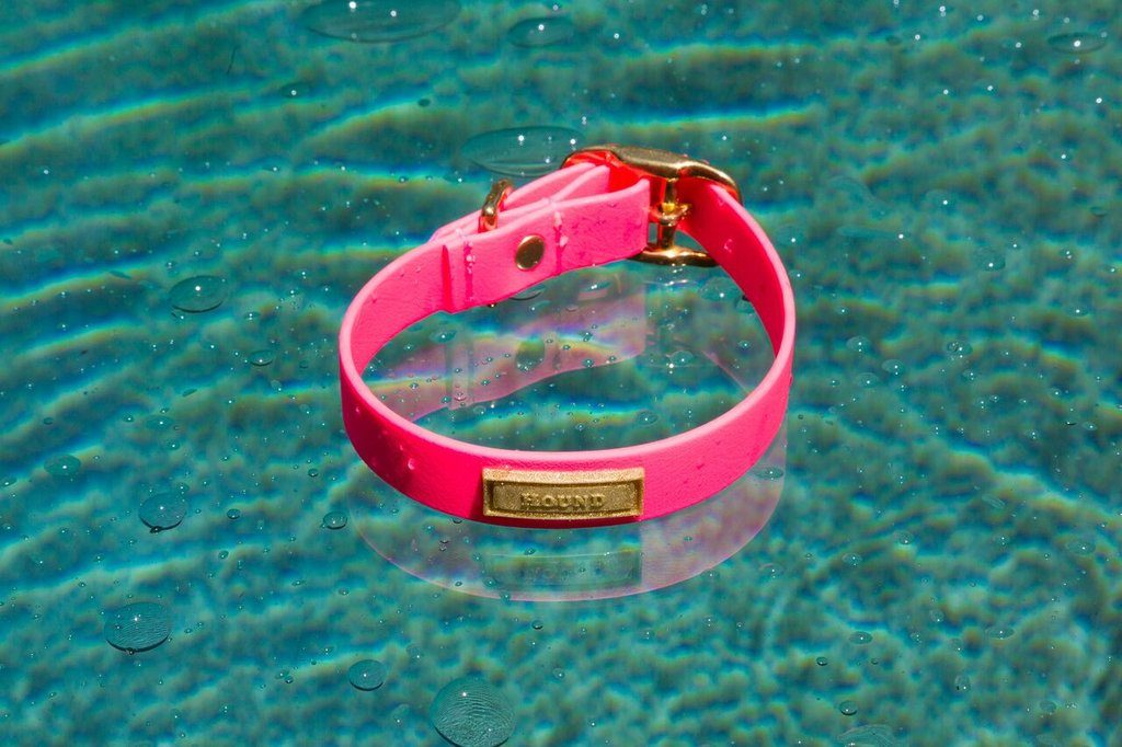 Electric Pink Jellies Waterproof Collar by HOUND