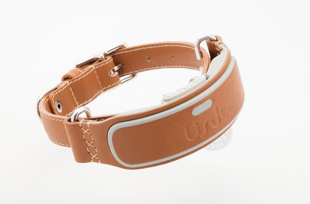 Beautiful Smart Collar For Your Dog The Link Akc