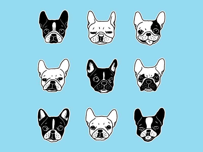 Cute Frenchies Doggie Family Collage by Chee Sim