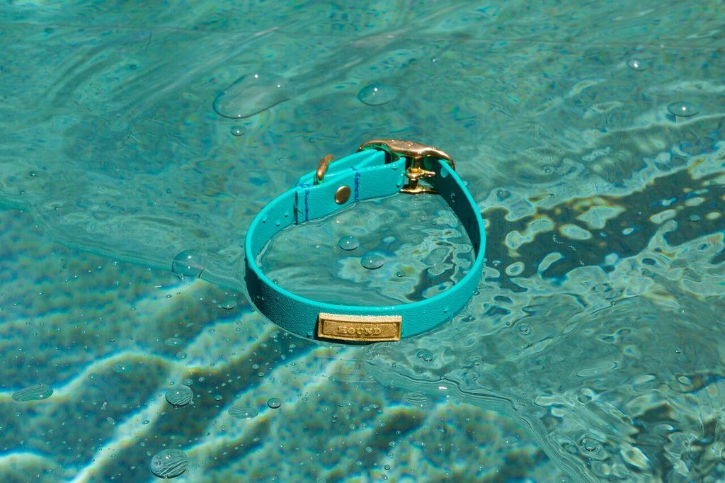 Aqua Jellies Waterproof Collar by HOUND