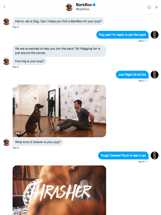 BarkBox Dog ChatBot