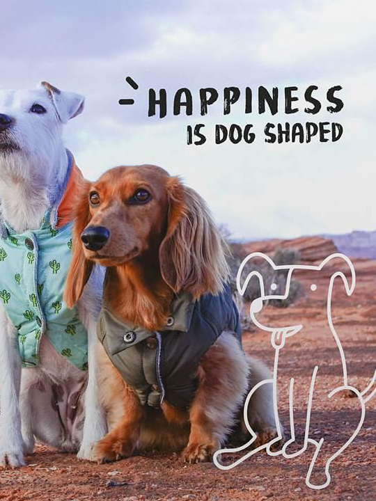 Happiness is Dog Shapes: A Book full of Dog Stories