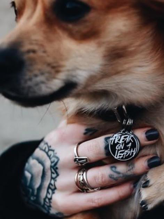 Bad to the Bone - Punk-Rock Dog Gear