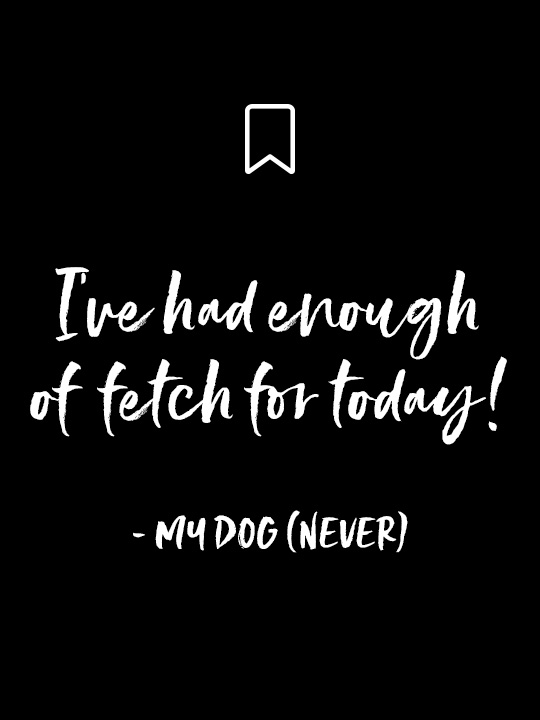 "Things My Dog Would Never Say: ""I've had enough of fetch for today!"